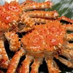 「蟹」の英語|発音とスペル・蟹の種類と料理の英語表現